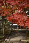 blog_kakura2.jpg
