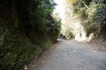 blog_kakura4.jpg