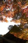 blog_kakura8.jpg